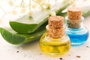 L'aloé vera et ses vertus pour votre beauté et votre santé