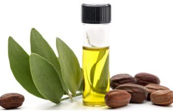 l-huile-de-jojoba