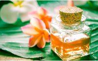 L'huile essentielle de frangipanier
